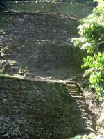 terraces_at_ciudad_perdida.JPG